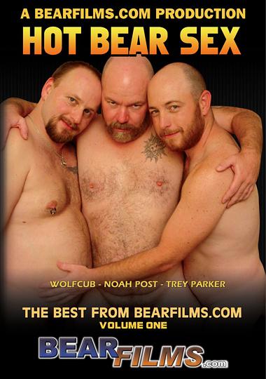 Hot Bear Sex cover
