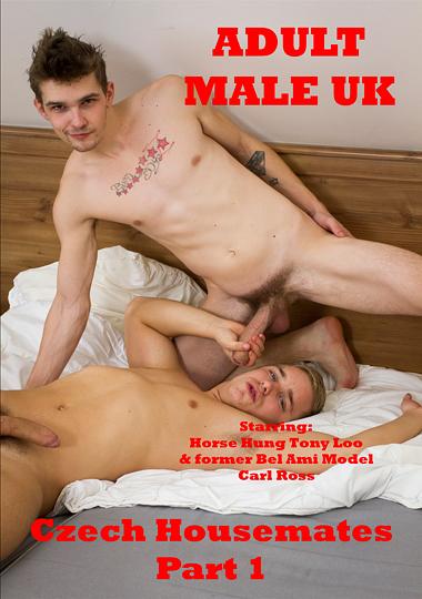 Czech Housemates cover