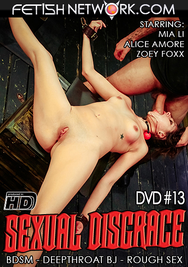 Sexual Disgrace 13 cover