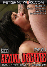 Sexual Disgrace 14