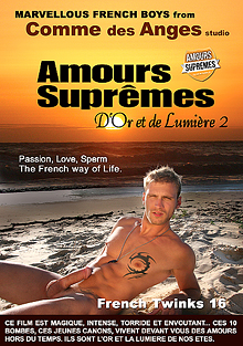 French Twinks 16: Amours Supremes - D'or Et De Lumiere 2 cover