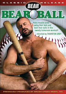 Bear Ball cover