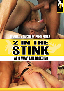 2 In The Stink cover