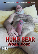 Hung Bear Noah Post