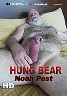Hung Bear Noah Post