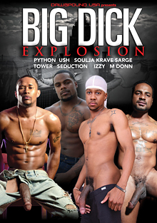 Big Dick Explosion cover