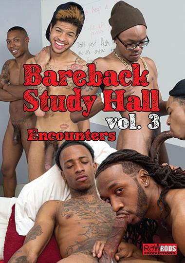 Bareback Study Hall 3: Encounters cover