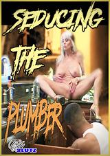 Seducing The Plumber Xvideos