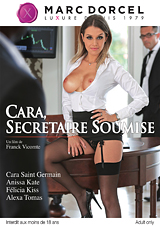 My Submissive Secretary - French Xvideos