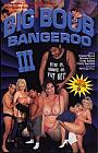 Big Boob Bangeroo 3