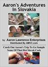 Aaron's Adventures In Slovakia
