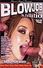 The Blowjob Adventures of Dr. Fellatio 42