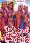 Big Boob Beach Bangers