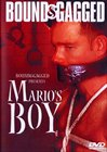 Mario's Boy