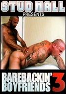 Barebackin' Boyfriends 3