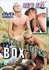 Stallions Box
