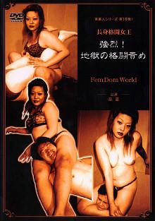 Hell Of Wrestling Punishment