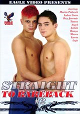 Straight To Bareback 2
