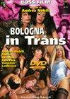 Bologna In Trans