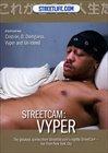 StreetCam: Viper