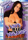 I Love Big Breasts