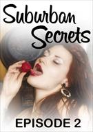Suburban Secrets 2