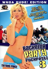 Bachelor Party Fuckfest 3