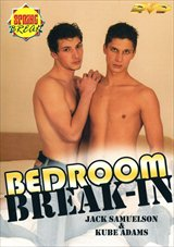 Bedroom Break-in