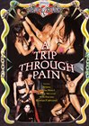 A Trip Through Pain