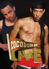 Coco Dorm Live 5