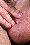 Brian Austin Thumbnail Image