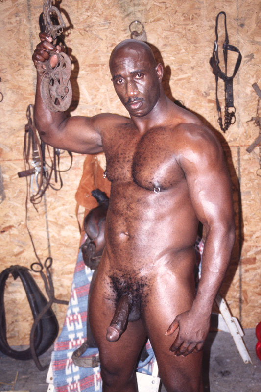 black tube gay