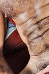 Tom Colt Thumbnail Image