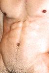 Dillon (Pitbull) Thumbnail Image