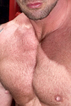Hank Dutch Thumbnail Image