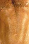 Felix (WaN) Thumbnail Image