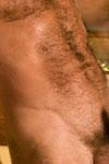 Bruno Bond Thumbnail Image