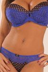 Lisa Ann Thumbnail Image