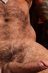 Alexsander Freitas Thumbnail Image