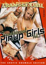 Transsexual Pinup Girls 2