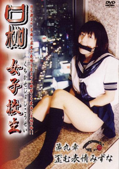 High School Gal 9 cover