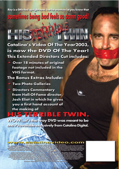 His Terrible Twin/His Wicked Twin Cover Back