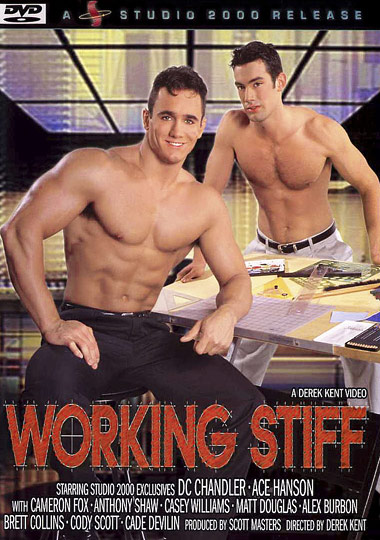 Working Stiff Cover Front