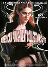 American Punishment Collections 13