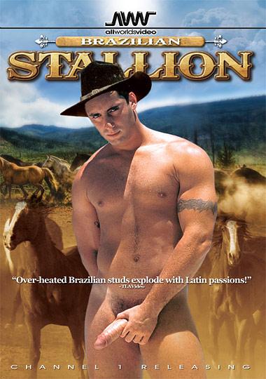 Brazilian Stallion Cover Front