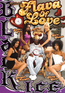 Official Flava Of Love Parody cover