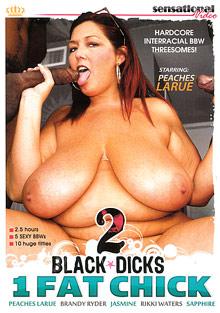 2 Black Dicks 1 Fat Chick cover