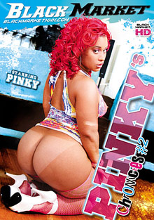 Pinky's Chronicles 2 cover