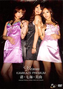 Kamikaze Premium: Venus cover
