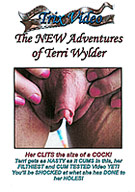The New Adventures Of Terri Wylder